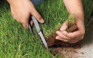 Оформить лишние сотки земли